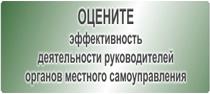 Опрос по эффективности деятельности руководителей органов местного самоуправления