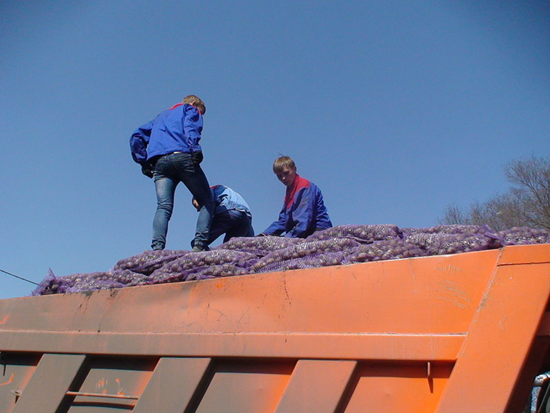 17 тонн картофеля разгрузили ребята с СЦМ
