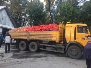 привезли овощи