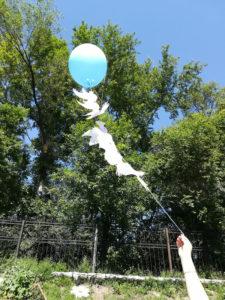 Запуск голубей в небо