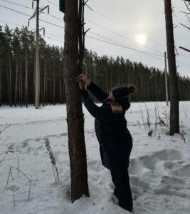 Закрепили кормушку для птиц на дереве